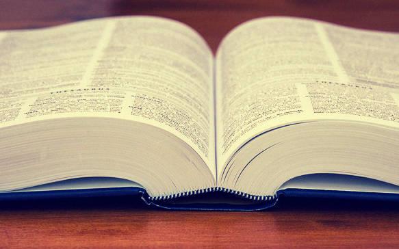 Ein aufgeschlagenes Wörterbuch